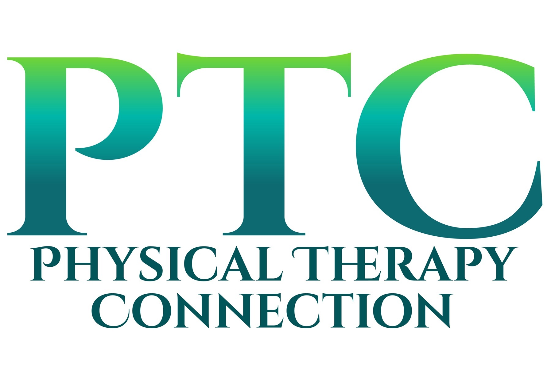 The Physical Therapy Connection